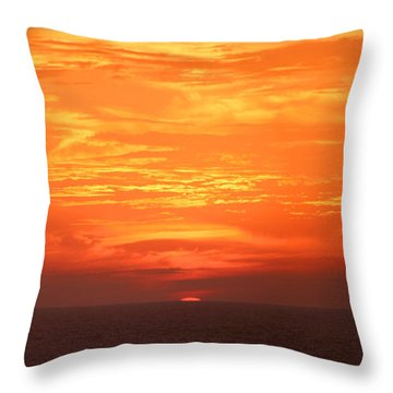 A Final Splash Of Color Throw Pillow