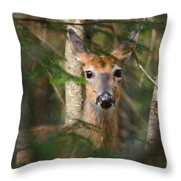 A Fleeting Glimpse Throw Pillow