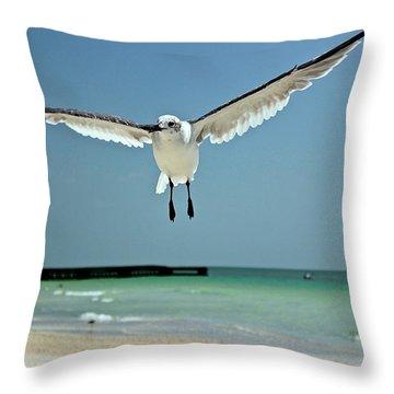 A Florida Gull Throw Pillow