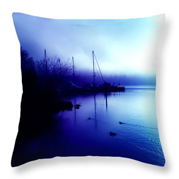 A Foggy Day At Log Boom Park In Kenmore Washington Throw Pillow