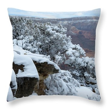 A Foot At The Canyon Throw Pillow by Laurel Powell