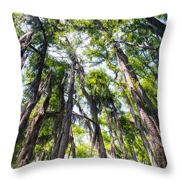 A Forest Of Bald Cypress Trees In The Caddo Lake Area Throw Pillow