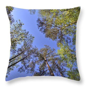 A Forest Sky Throw Pillow
