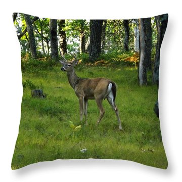 A Free Day Throw Pillow