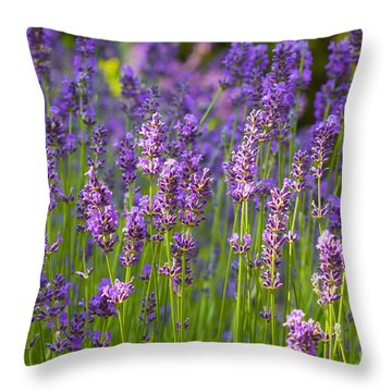 Throw Pillow featuring the photograph A Friendly Summer Day by Juergen Klust