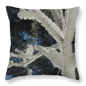 A Frosty Morning Throw Pillow by Mike Breau
