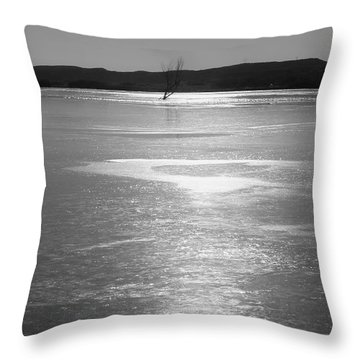 Throw Pillow featuring the photograph A Frozen Lake by Roena King