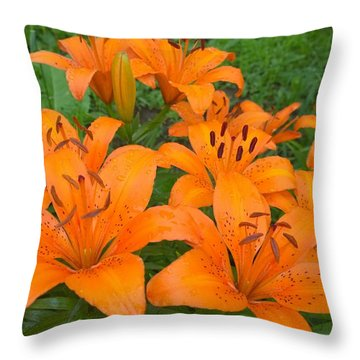 A Garden Full Of Lilies Throw Pillow