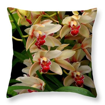Throw Pillow featuring the photograph A Gathering by Rodney Lee Williams