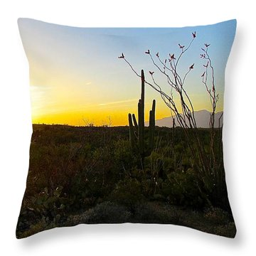Throw Pillow featuring the photograph A Gentle End To The Day by Brenda Pressnall