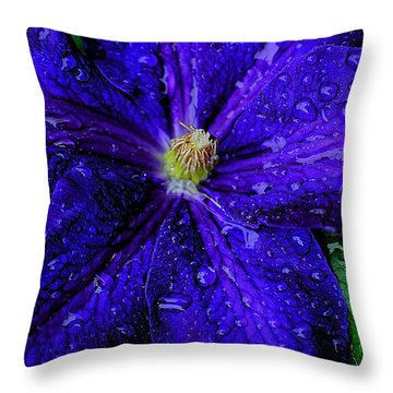 A Gentle Rain Throw Pillow by Frozen in Time Fine Art Photography