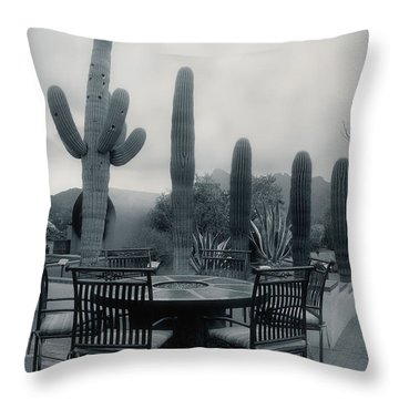 A Gentle Winter Rain Throw Pillow