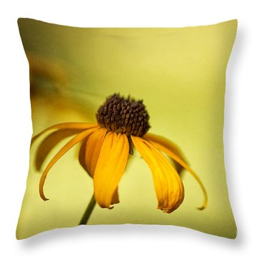 A Gift From August Throw Pillow by Lois Bryan