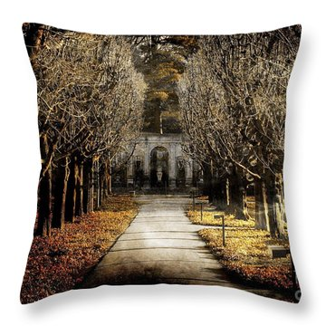 A Glamorous Era Throw Pillow