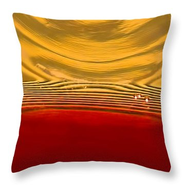 A Glass Of Wine-backlit With Blinds-and Wow Throw Pillow by Gary Holmes