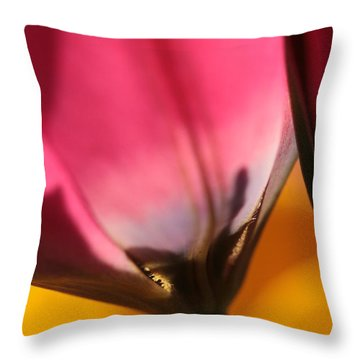 A Glimpse Into Eternity Throw Pillow