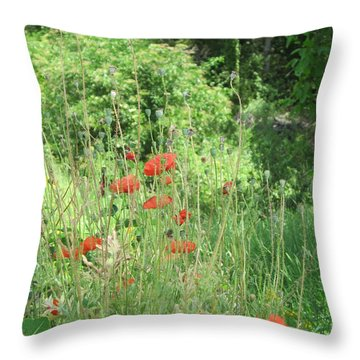 A Glimpse Of Poppies Throw Pillow by Pema Hou