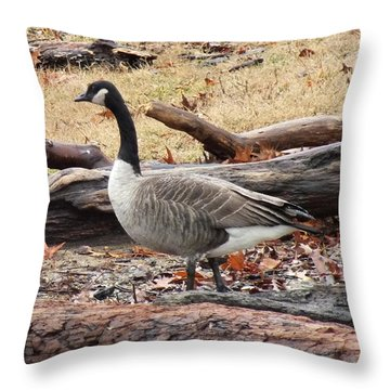 A Goose In Virginia Throw Pillow