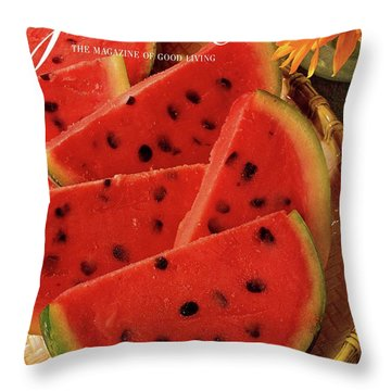 A Gourmet Cover Of Watermelon Sorbet Throw Pillow
