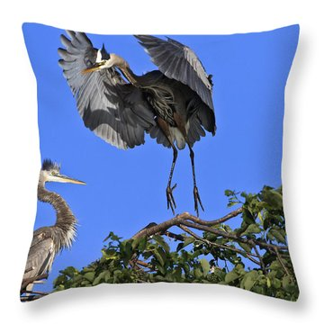 A Graceful Landing Throw Pillow