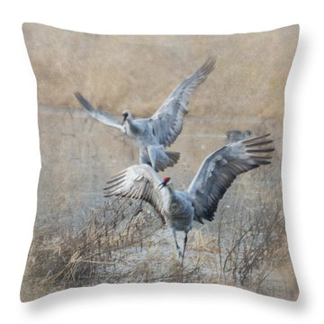 A Grand Entrance Throw Pillow by Angie Vogel