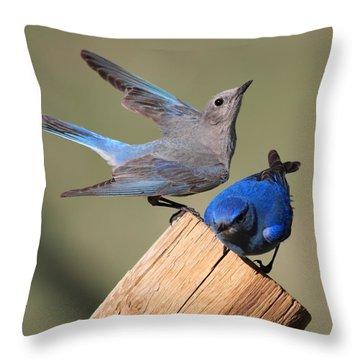 A Great Pair Throw Pillow