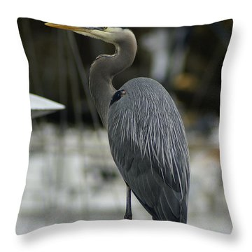 A Great Pose Throw Pillow