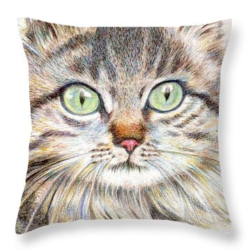 A Handsome Cat  Throw Pillow