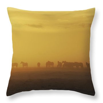 A Herd Of Horses In The Morning Fog Throw Pillow by Roberta Murray