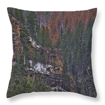 A Hint Of Brown Throw Pillow