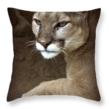 A Hope For Harmony Throw Pillow