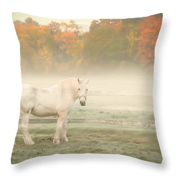 A Horse With No Name Throw Pillow by K Hines