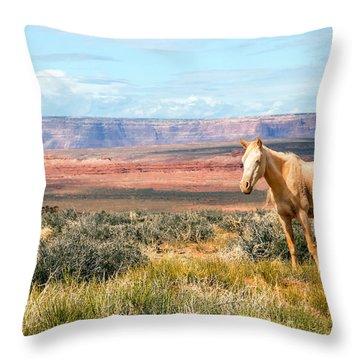 A Horse With No Name Throw Pillow