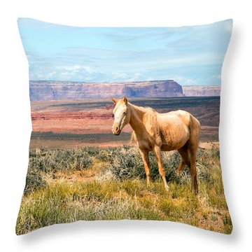 A Horse With No Name Throw Pillow