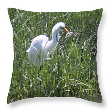 A Hungry Great Egret Throw Pillow