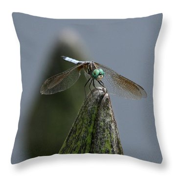 A Launch Pad Throw Pillow by Yvonne Wright