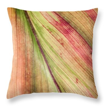 A Leaf Throw Pillow