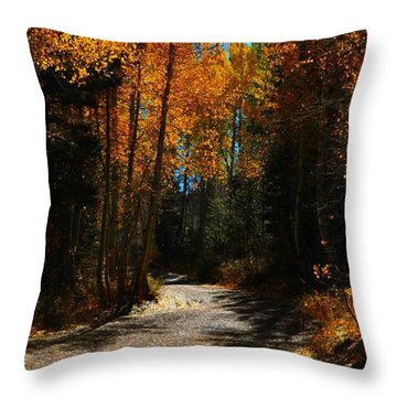 A Leisure Drive Throw Pillow