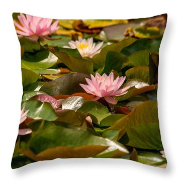 A Lily Carpet Throw Pillow
