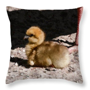 00016 A Little Attitude Throw Pillow
