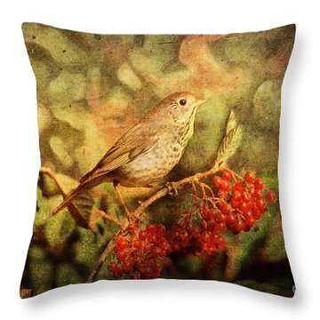 A Little Bird With Plumage Brown Throw Pillow by Lianne Schneider