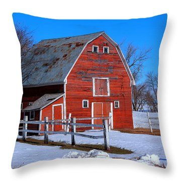 A Little Bit Of Country Throw Pillow
