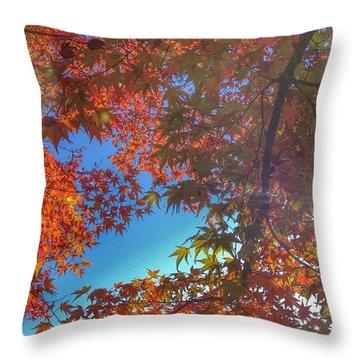 A Little Bit Of Sunshine On A Fall Throw Pillow by Blenda Studio