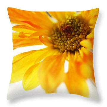 A Little Bit Sun In The Cold Time Throw Pillow