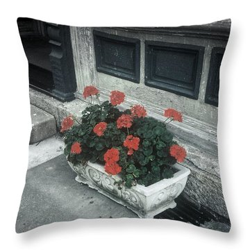 Throw Pillow featuring the photograph A Little Color In A Drab World by Rodney Lee Williams