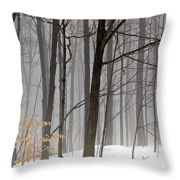Throw Pillow featuring the photograph A Little Color by Vickie Szumigala