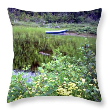 Throw Pillow featuring the photograph A Little Flat Awaiting by Barbara Griffin