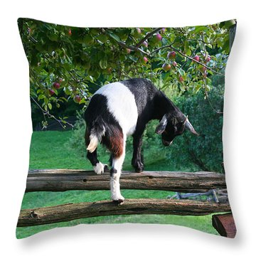 A Little Goat Throw Pillow