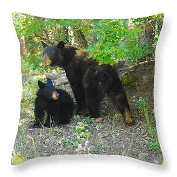 A Little Growl Before Departing Throw Pillow by Jeff Swan