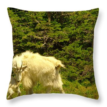 A Little Privacy Please Throw Pillow by Jeff Swan